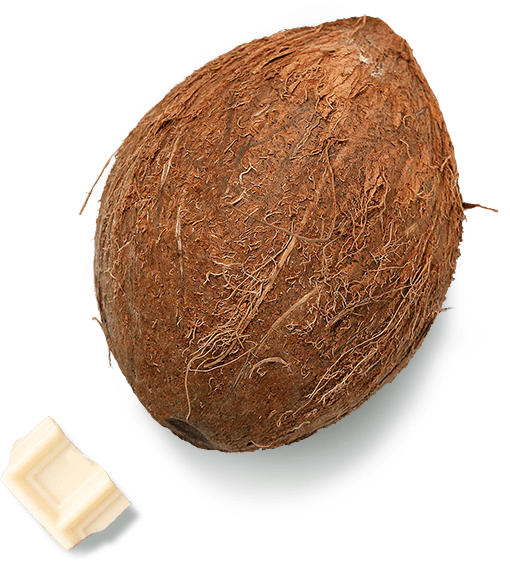 Kokos i bela kockica