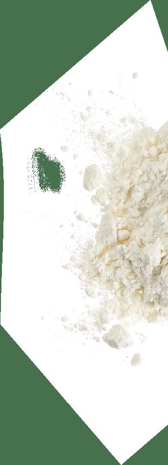 noblice_plates_flour_back