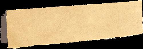 Toto papir